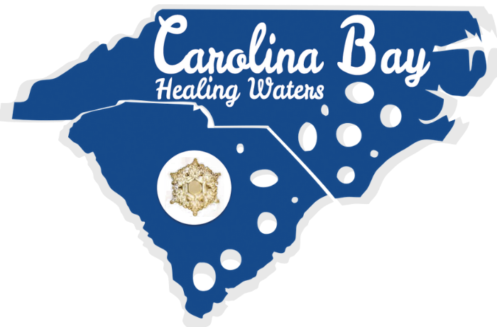 Carolina Bay Healing Waters